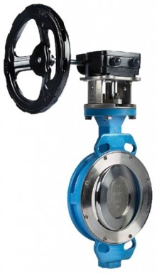 Double-offset butterfly valves